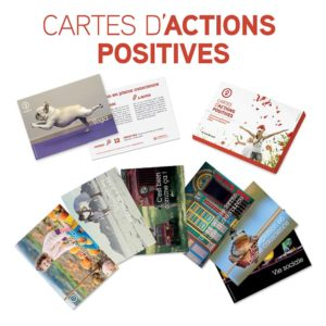 Cartes actions positives