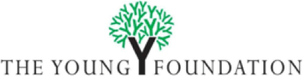 logo theyoungfoundation