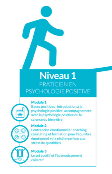 Distinguer psychologie positive pleine conscience et approche neurocognitive et comportementale