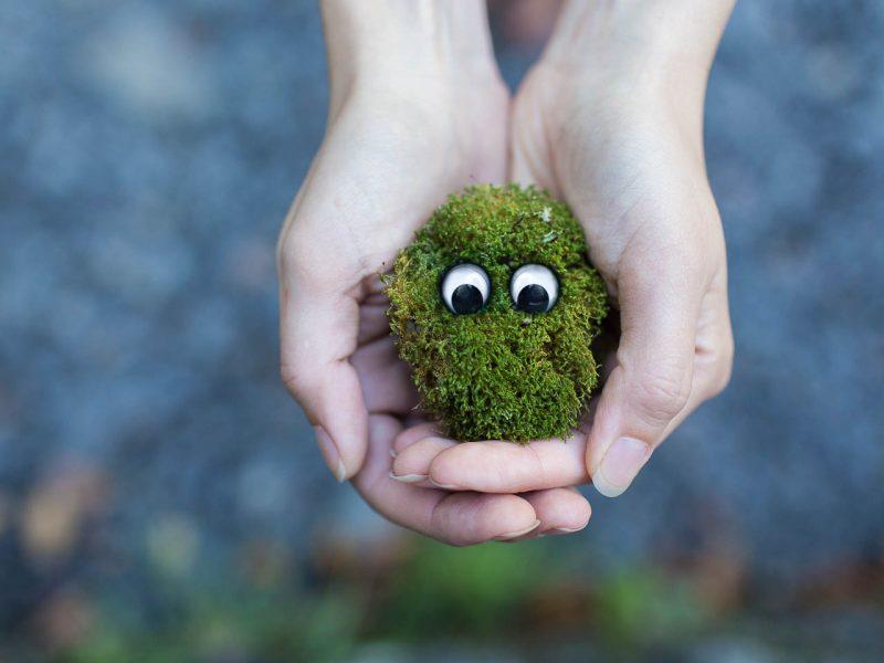 formation sur le bonheur durable