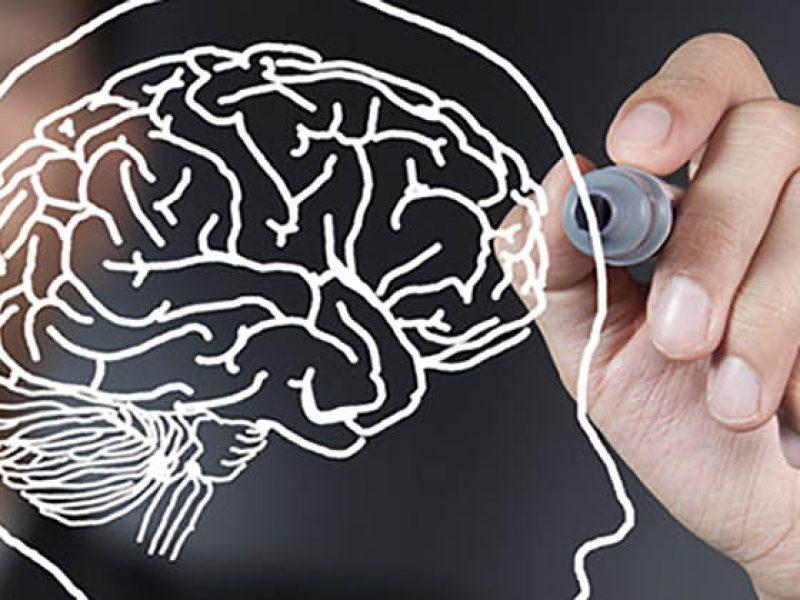 Quand les neurosciences réhabilitent le libre arbitre